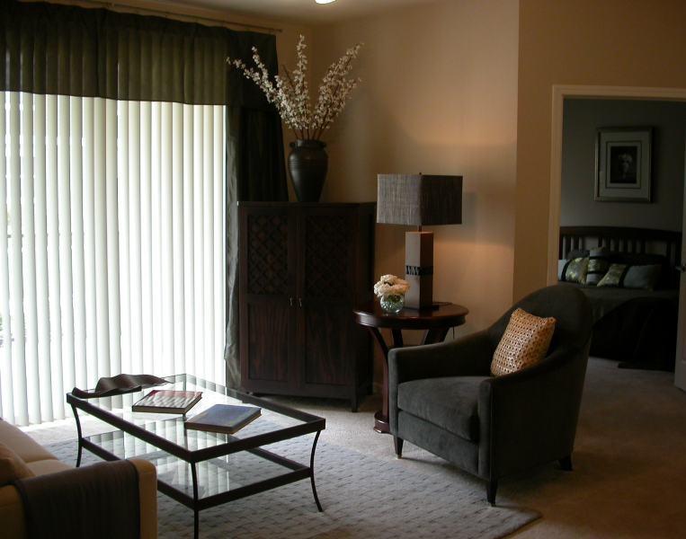 cozy-apartment-living-room-decorating-idea