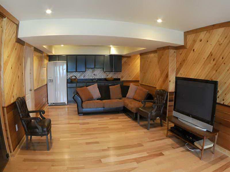 mid-century-basement--design-