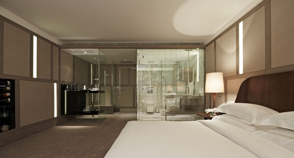 modern-style-open-bathroom-bedroom