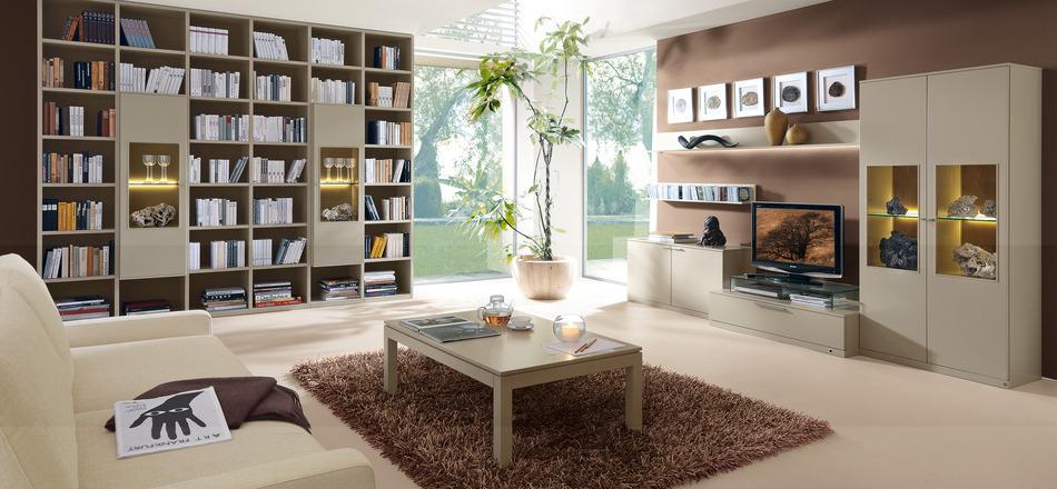 modern-modular-bookcase-fur-rug-library