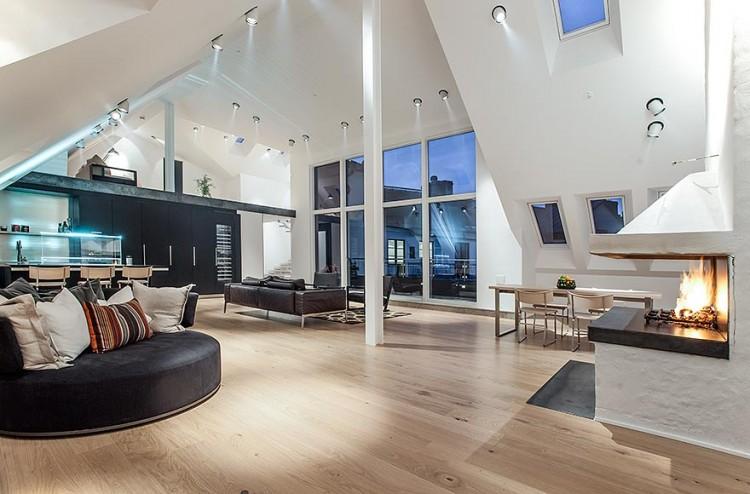 nice-unique-penthouse-pleasurable