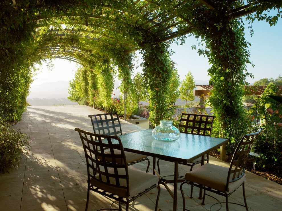Sumptuous-Grape-Arbor ideas