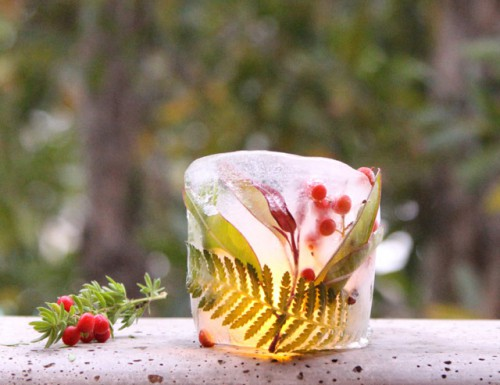 diy-botanical-ice-luminaries-for-outdoors-