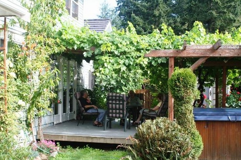 grape-arbor-design-ideas