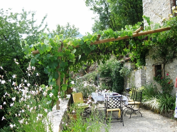 mediterranean-patio-landscaping-outdoor-furniture-sun-protection-wooden-pergola-grapevines