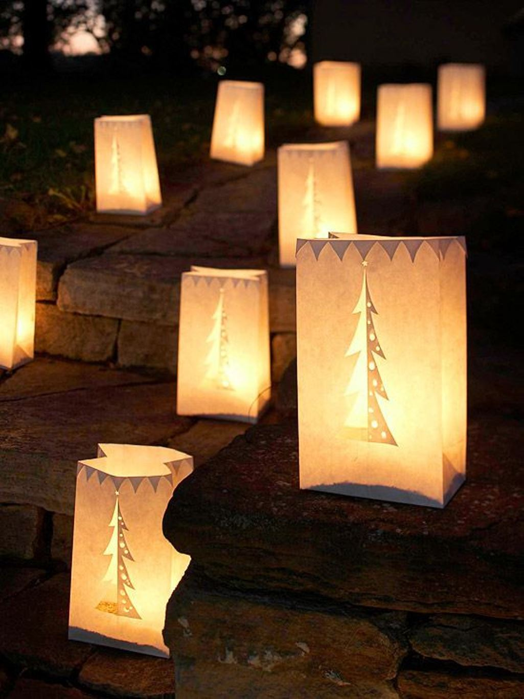 Best Outdoor Christmas Decorations (12)