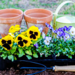 The Best Tools for Getting Your Garden Ready This Spring