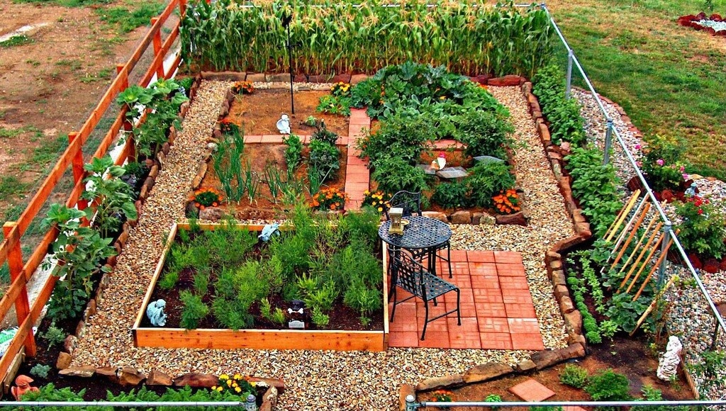 Making your own vegetable patch