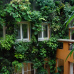 How to Create a Beautiful Vertical Home Garden?