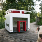 Easy Tips for Decorating Your Dog's House