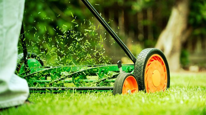 Rejuvenate Your Lawn