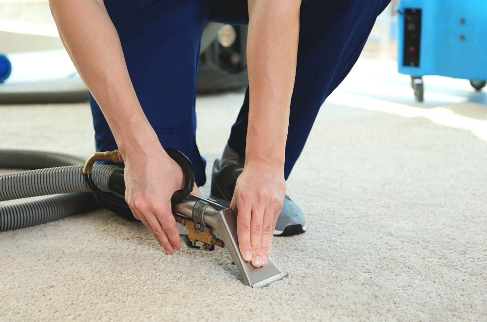 Clean Carpet after Damage