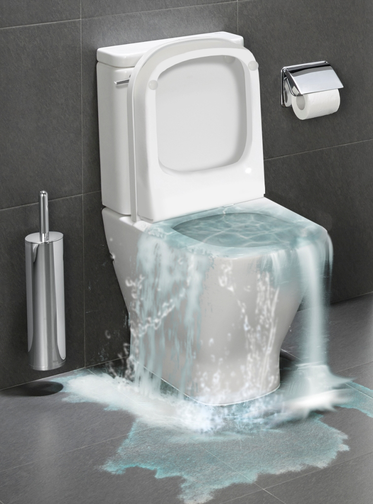 Toilet Overflowing