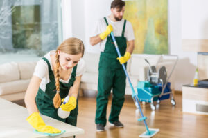 The Mark of House Cleaning: Chicago and Its Cleaners