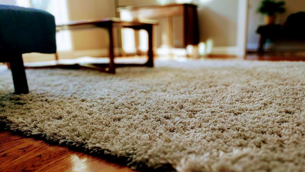 Removes Funky Carpet Odour