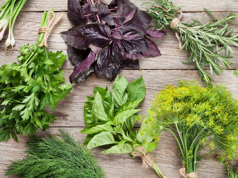 Herbs Will Make Your Food Taste Better