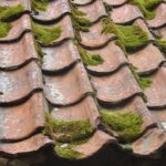 7 Straightforward Ways Of Maintaining Your Roof