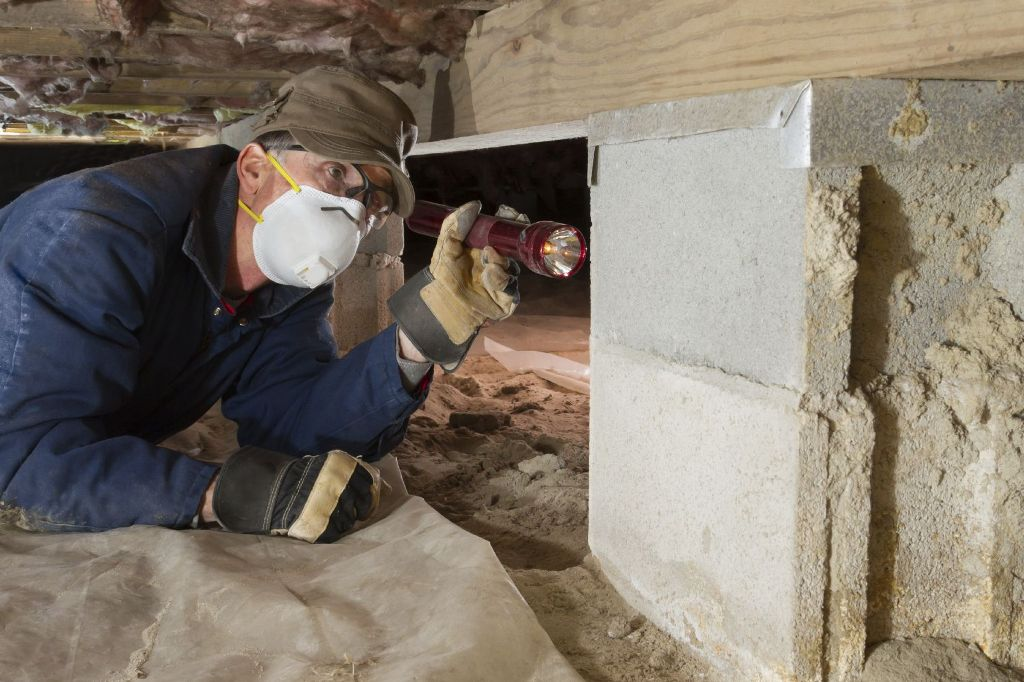 Inspecting the Foundation
