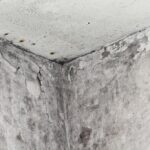 Damp Basement: Common Causes, Prevention, and Solutions
