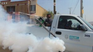 5 Crucial Reasons Why Investing In Professional Pest Control Services Is Worth It