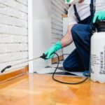 What are the Major Benefits of Pest Control?