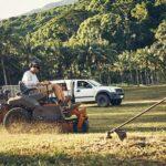 Easy Yet Important Tips when Choosing Landscape Maintenance Contractors