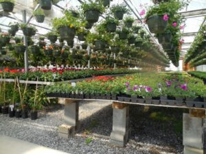 9 Creative Uses of Air Compressor in Garden