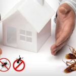 Hiring Pest Control Services