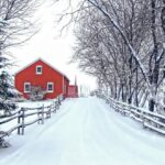 Significant Precautions For the Home You Need to Follow During Snowfall