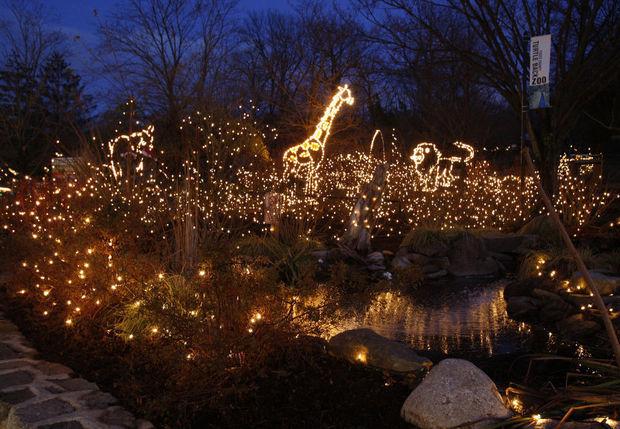 Holiday Lights at Turtleback Zoo