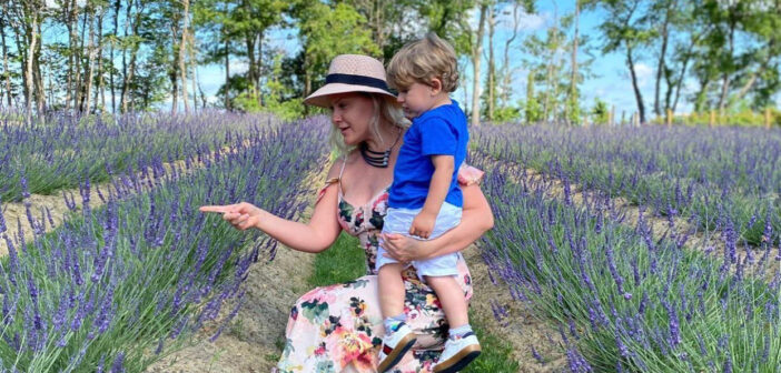 nj mom new jersey 10 kid-friendly things to do this week june