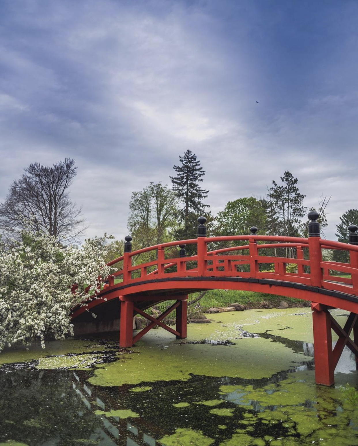 nj mom best gardens and nature centers in new jersey duke farms