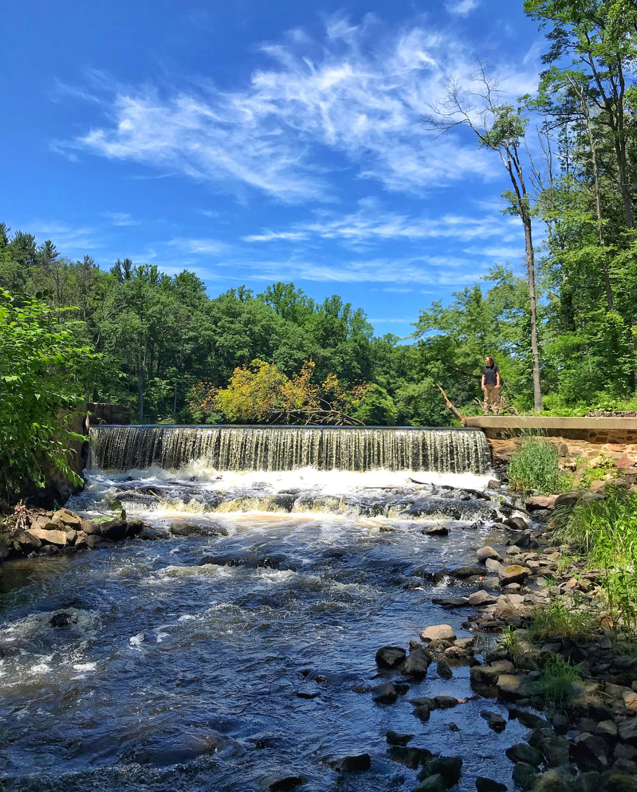 nj mom best hiking trails in new jersey nj hikes black river county park