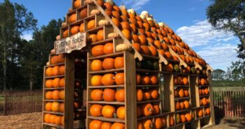 NJ mom kid friendly things to do this week happy day farm fall harvest festival