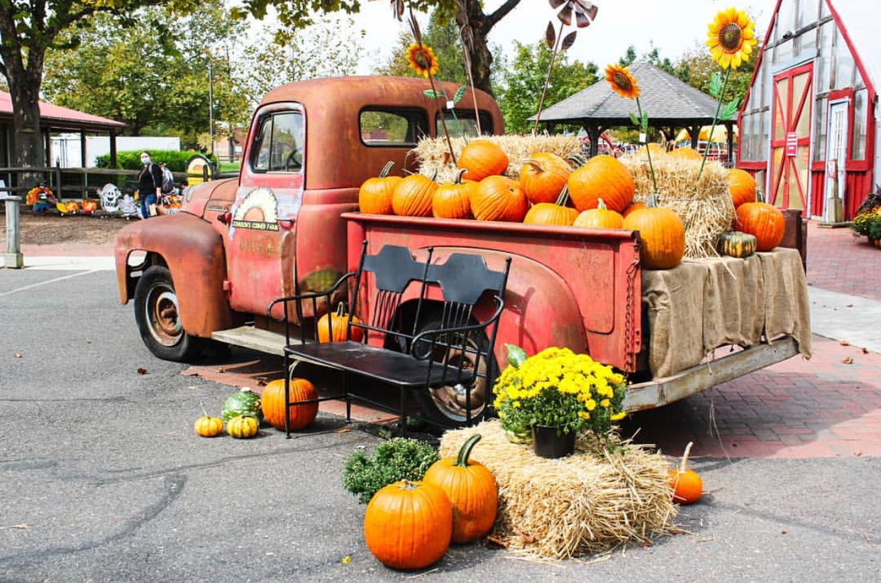 Things to do in NJ Fall in NJ things to do in New Jersey fall activities in NJ farms in nj johnsons corner farm