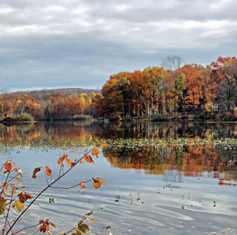Allamuchy State Park nj mom fall leaves in new jersey