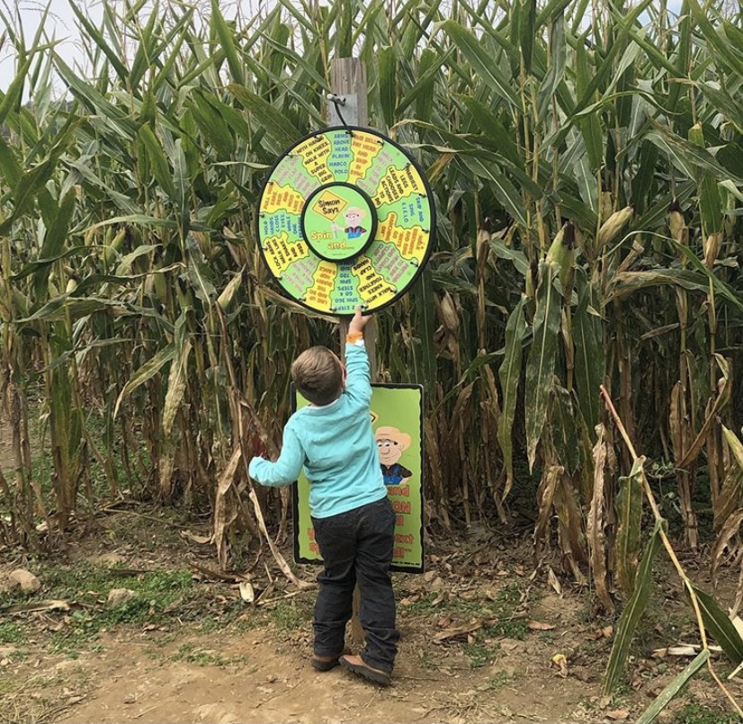 Corn Maze in NJ VonThun Farms NJMOM NJ corn maze
