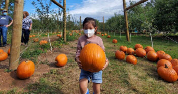 nj mom kid friendly things to do this week demarest farms pumpkin picking in nj movie night