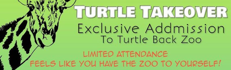 turtle-take-over-nj-mom-zoo-things-to-do