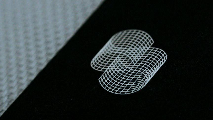 phD-Logo Design-Chimera Screems