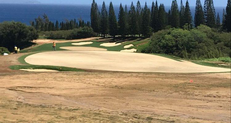 Kapalua Plantation Course Renovation On Schedule Aces Golf