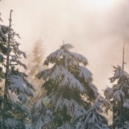 Helpful Tips To Thrive This Ski Season