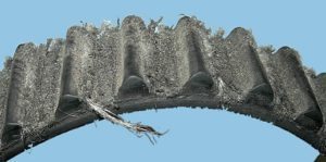 Worn Or Damaged Timing Belt
