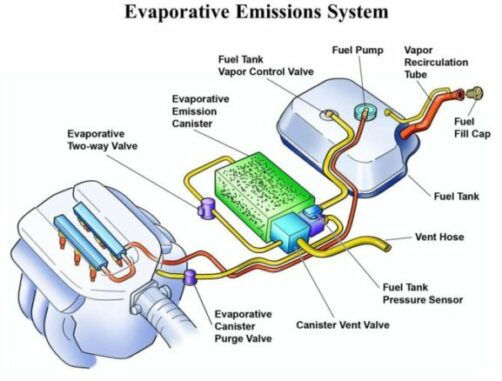 Evaporative Emission Control System (EVAP) Illustration