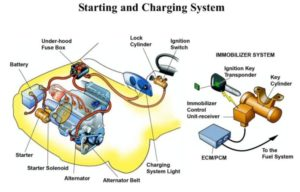 Starting And Charging System Illustration