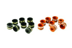Positive Type Valve Stem Seals