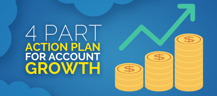 4 Part Action Plan for Account Growth
