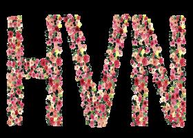 Fashion: HVN Clothing