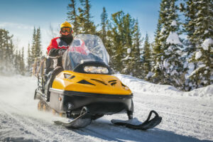snowmobile theft