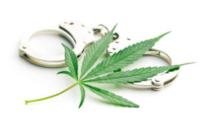 marijuana arrests